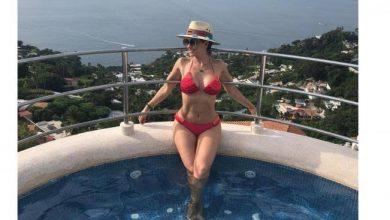 9257f28fdc50 Aracely Arámbula baila sexy en bikini con su perrito | Anton Noticias